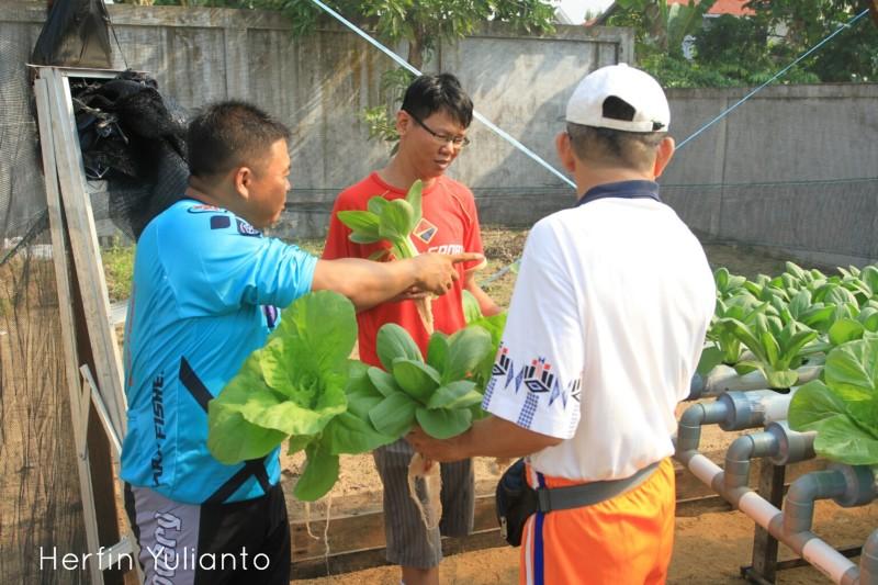 Sukarame Farm Pontianak www.tamasyapuriwisata.com