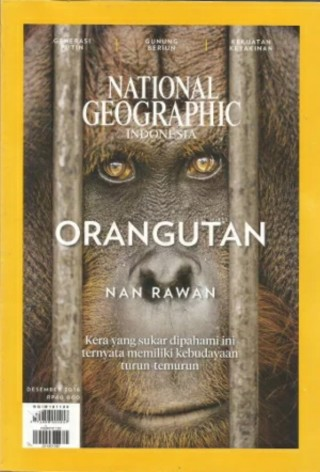 Orangutan, donated book by Herfin Yulianto