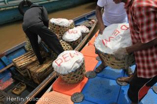 Pelampong Waterfront www.tamasyapuriwisata.com
