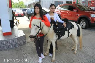 Kuda dan Wanita